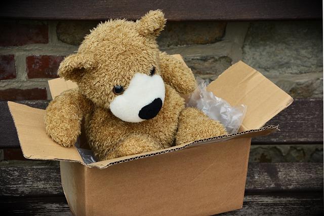 bear plush in cardboard