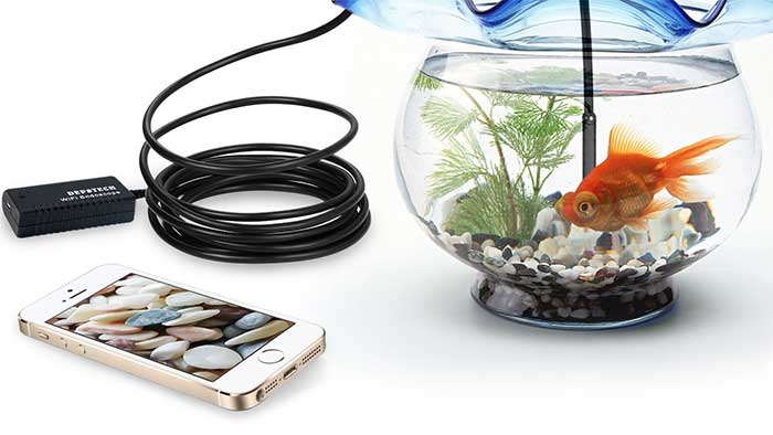 Endoscope looking inside a fish tank