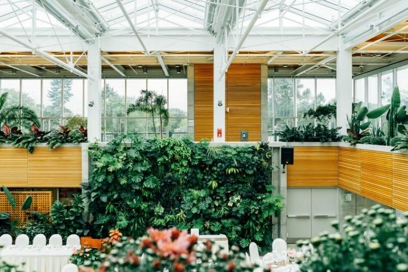 tropical green house