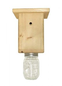 original b brothers carpenter bee trap image