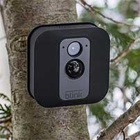 motion sensing camera setup in a tree