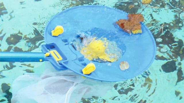 Water tech leaf vac